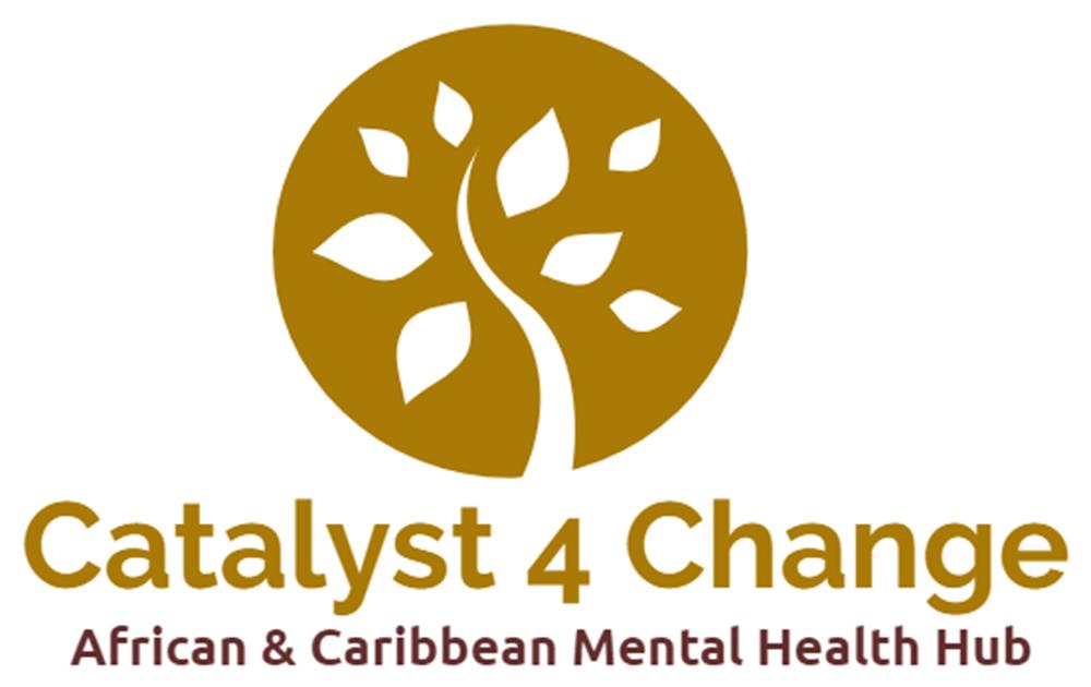 Catalyst 4 Change CIC Meeting